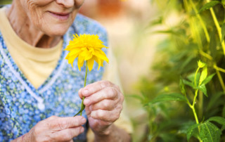 "alt=""senior living gardening"""