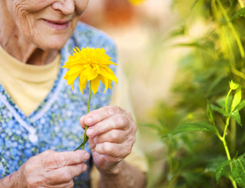 Top Benefits of Gardening in Memory Care