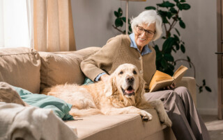 Senior woman sitting on couch with dog, happy and smiling